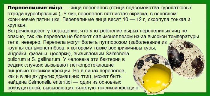 Перепелиные яйца лечебные свойства для мужчин